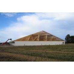 Dachkonstruktionen 1